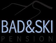 BadSki logo